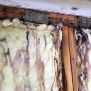Mold Remediation in Granville, MA (1)