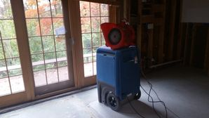 Mold Removal after Water Damage from Burst Pipes in Boston, MA (1)
