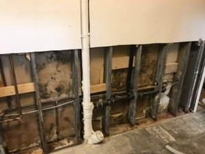 Mold Removal & Water Damage Restoration in North Brookfield MA (1)