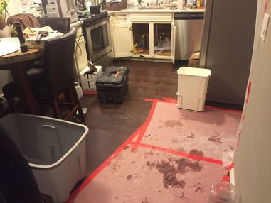 Mold Removal after Water Damage from Burst Pipes in Westfield MA (2)