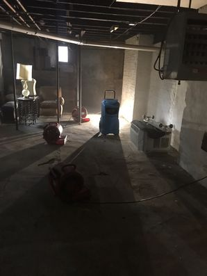 Crawl Space Cleaning & Mold Removal in Milford MA (5)
