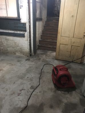 Crawl Space Cleaning & Mold Removal in Milford MA (3)