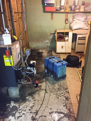 Water Damage, Mold Removal Boston MA (4)