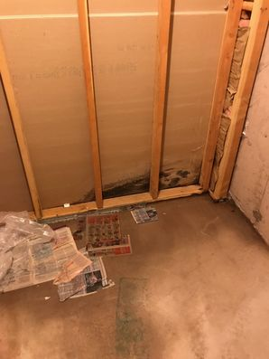 Mold Removal & Water Damage Lincoln, MA (1)