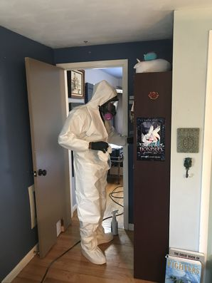 Mold Remediation in Chicopee, MA (2)