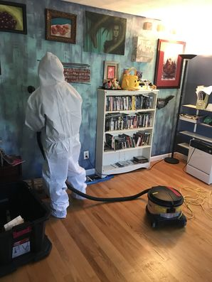 Mold Remediation in Chicopee, MA (1)